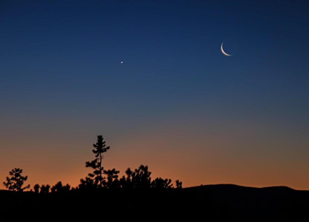 Morning Twilight Lights