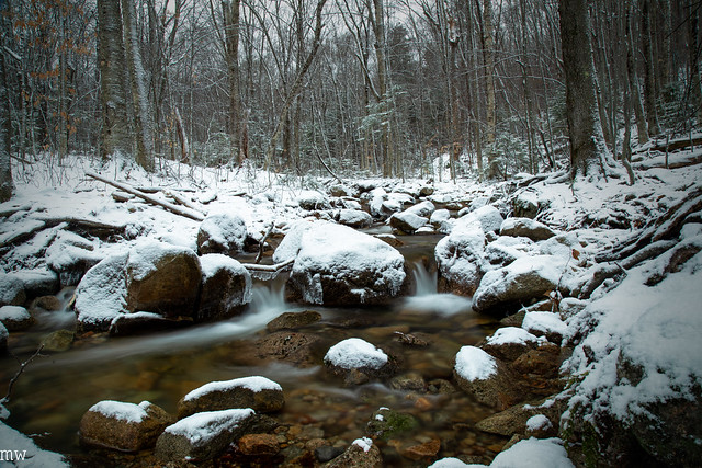 Tecumseh Brook