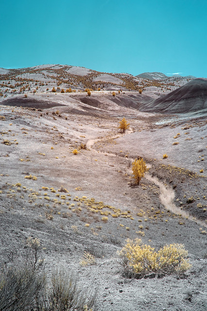 Barren Landscape - John Day Fossil Beds National Monument