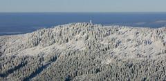 Trojmorski Wierch/Klepáč - Králický Sněžník
