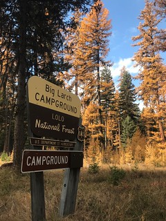 Big Larch Campground Sign - Lolo NF 2020 Annual Report