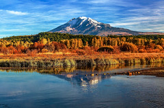 Mount Adams Wetland Reflections