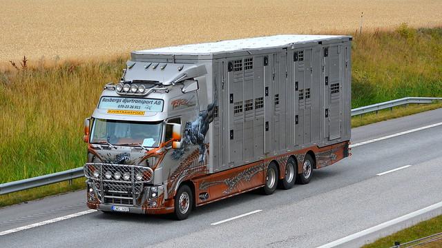 S - Volvo FH Globetrotter XL - Rosbergs djurtransport