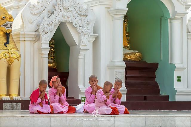 Praying Thilashin Girls, Shwedagon Pagoda, Yangon, Myanmar