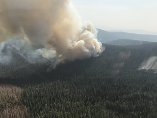 Wildfire - Lolo NF 2020 Annual Report