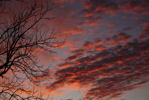 silhouette tree treebranches treelimbs sunset clouds sky thereisagod