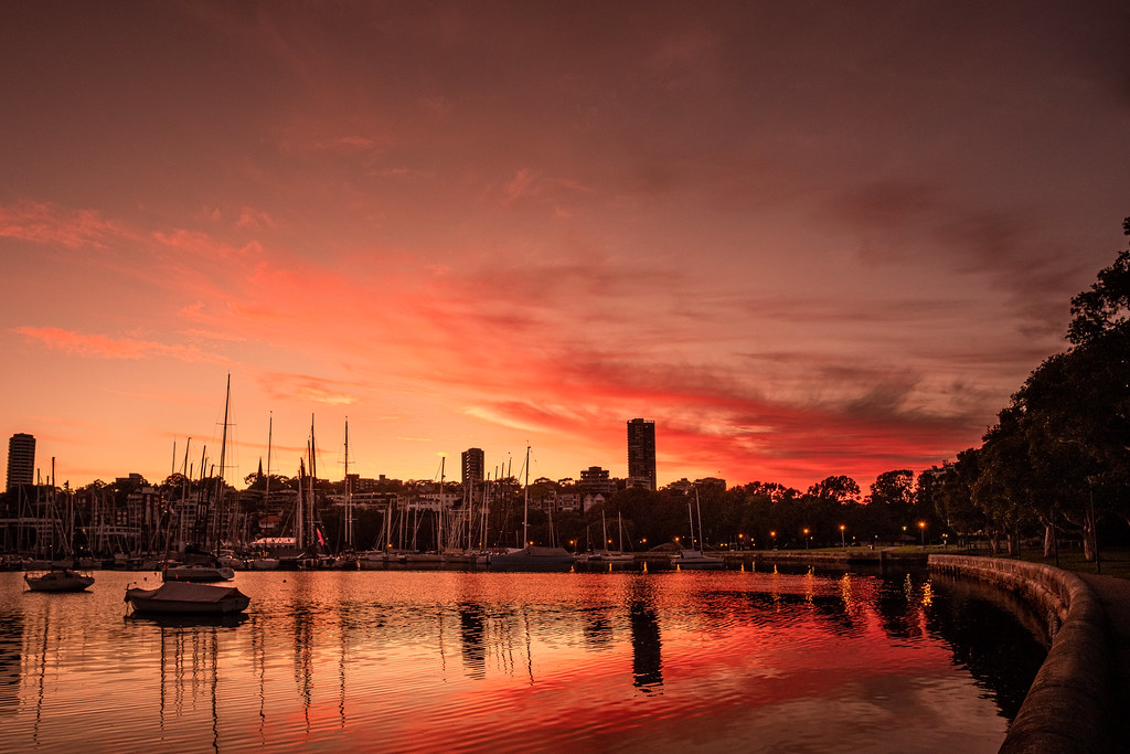 Clouds are said to increase in Sydney today, but dawn at Rushcutters Bay had the perfect amount.