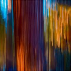 Dragging Trees, No. 7 by ski 9