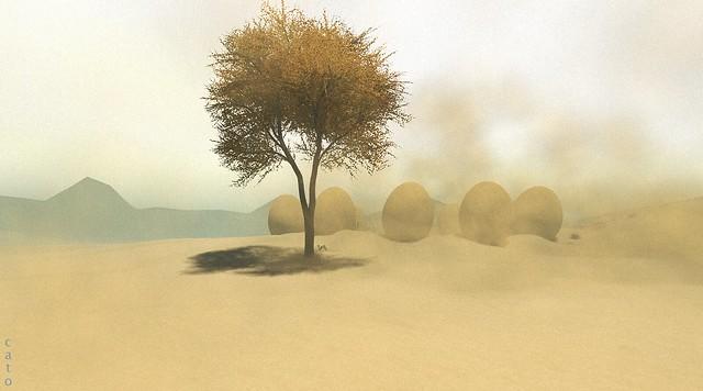 The Valley of Pondering Eggs - II - Blogpost
