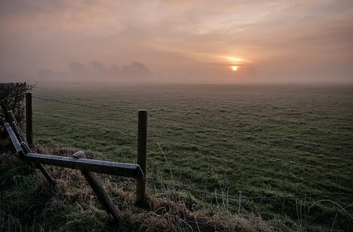 kenn somerset england uk nikon nikond300 sunrise landscape moors sun mist misty fog foggy fence field grass muted diffuse trees