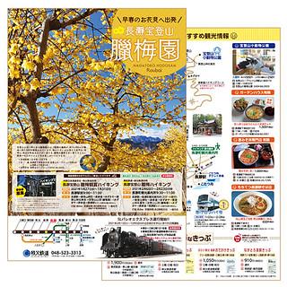 長瀞宝登山臘梅園(2021パンフレット)