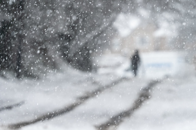 A White Walk