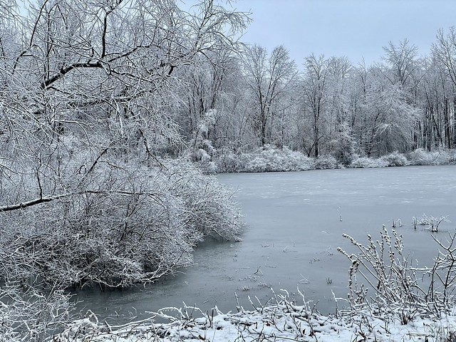 Winter in Indiana (9)