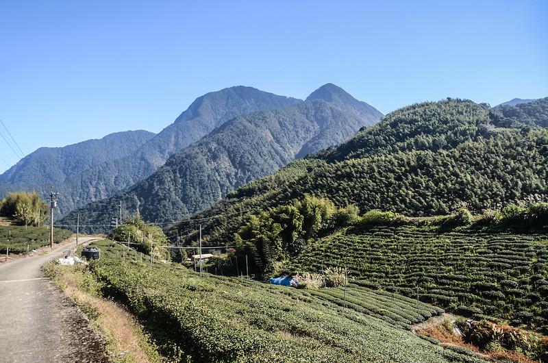 南雙龍產道最高點東南望治茆群峰