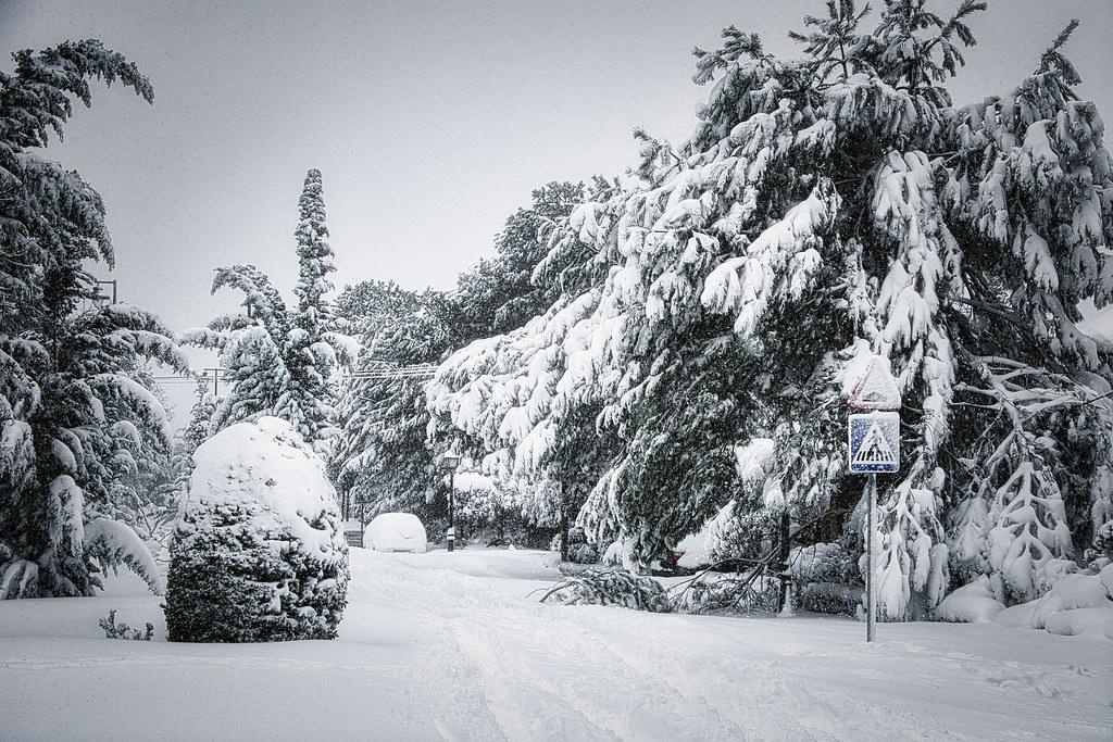 Madrid big Snowfall, 9