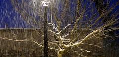 Campan (Hautes-Pyrénées, Occitanie, Fr) – Tombe la neige