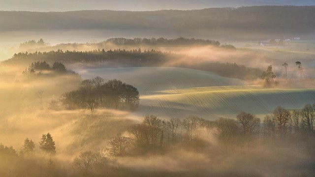 *golden light in the valley of the morning mist*