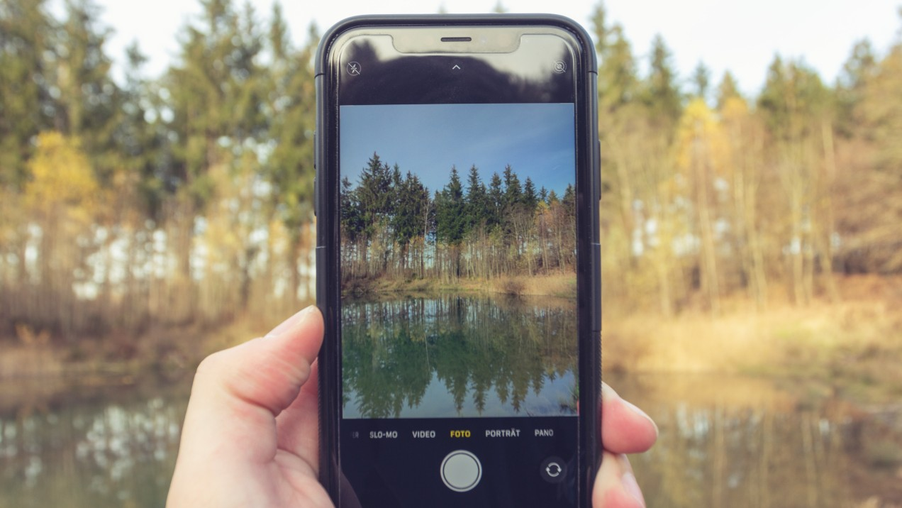 Someone holding a phone up, taking a picture of a trees and a lake