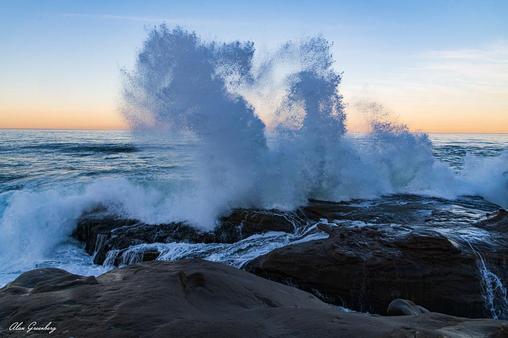 Sea horse in the ocean spray