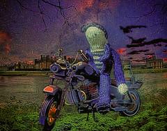"""""""Midnight  Rider"""""""