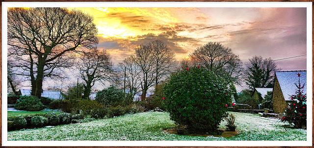 Levé du jour dans mon jardin d'hiver. Sunrise in my winter garden