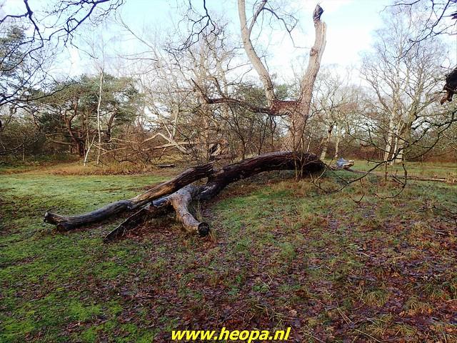2021-01-09       Scheveningen    25 Km  (64)