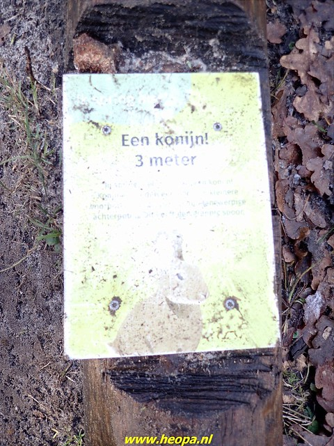 2021-01-09       Scheveningen    25 Km  (47)