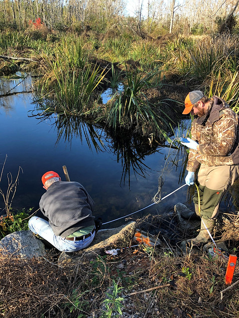 Auburn researchers take flow readings at a culvert.
