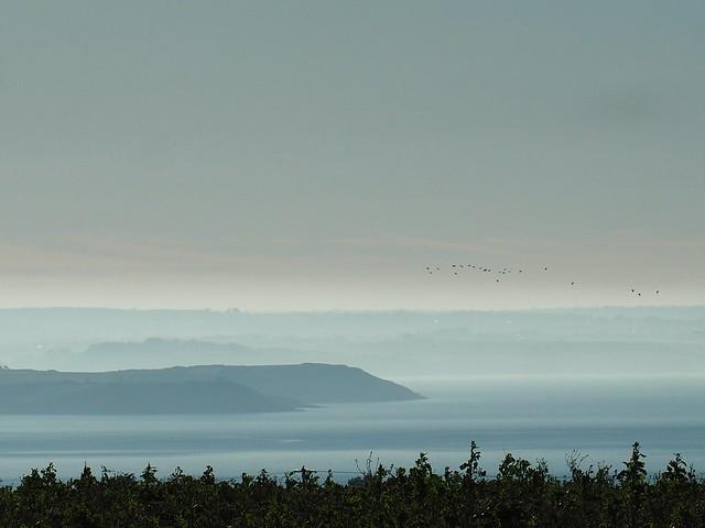 Brume sur la mer...mist on the sea