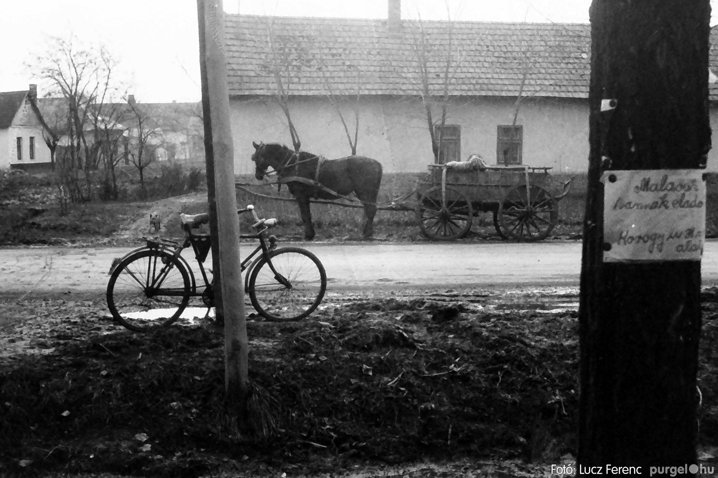 007 1975. Vegyes képek 022 - Fotó: Lucz Ferenc IMG00084.JPG