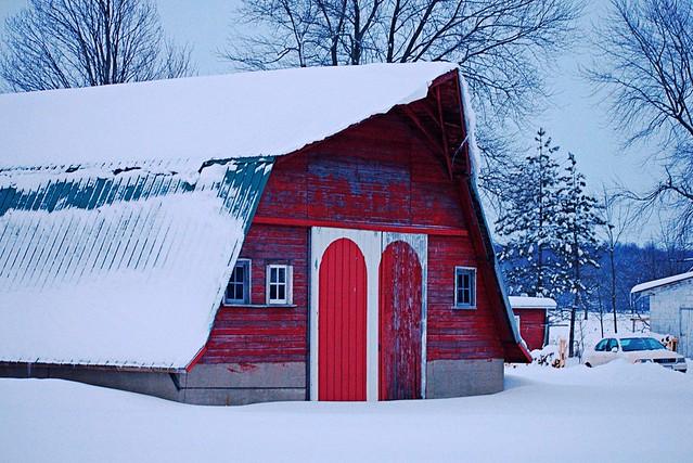 Wonders of Winter #11