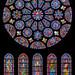 "<p><a href=""https://www.flickr.com/people/larrywkoester/"">larrywkoester</a> posted a photo:</p>  <p><a href=""https://www.flickr.com/photos/larrywkoester/50830082032/"" title=""Chartres_South transept rose window, c.1221–1230""><img src=""https://live.staticflickr.com/65535/50830082032_c769a71ea9_m.jpg"" width=""151"" height=""240"" alt=""Chartres_South transept rose window, c.1221–1230"" /></a></p>  <p>SONY DSC</p>"