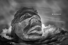 Head in the Clouds 2427