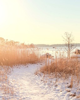 Winter day in Helsinki | by nina_hytti_