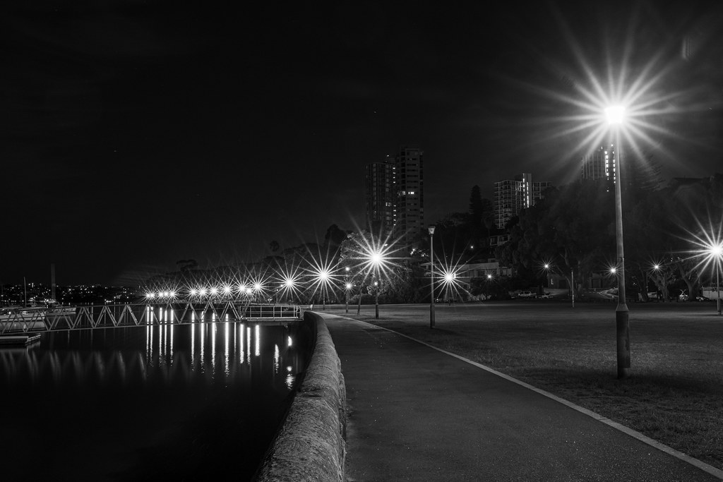 Rushcutters Bay Park on Sydney Harbour before dawn.