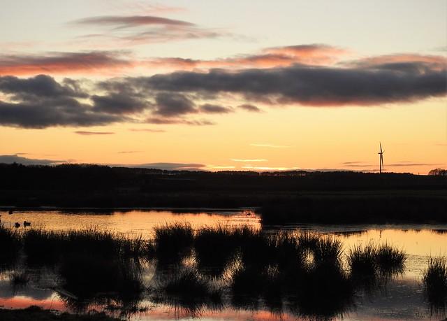 Druridge Wetlands - Sunrise Silhouettes