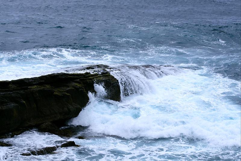 Waves, Penguins Head