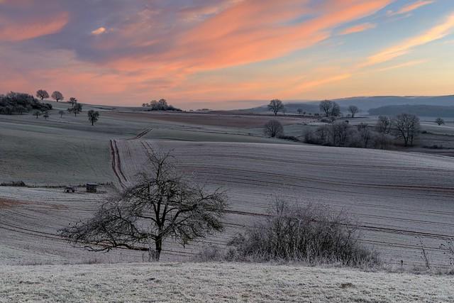 *Frostiger Januarmorgen in der Moseleifel*