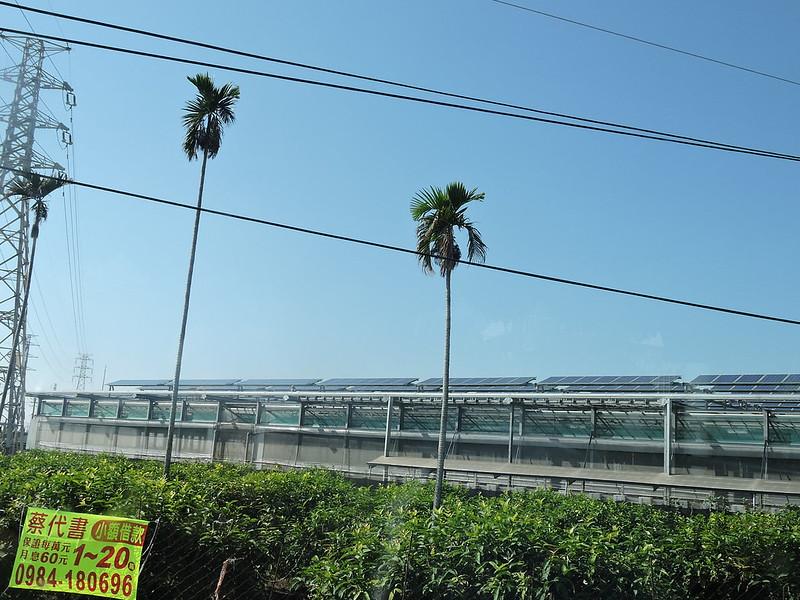 在養殖室屋頂裝設太陽能板。圖/Yoxem(Flickr)提供