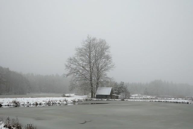 Die Blockhütte in der Tirschenreuther Teichpfanne. The log cabin in the Tirschenreuther Pond Pan