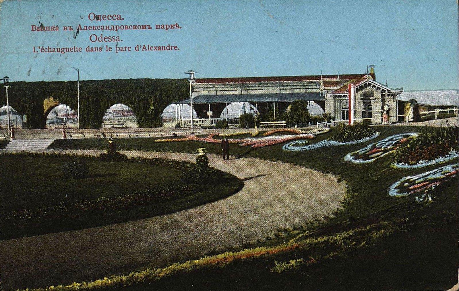 Вышка в Александровском парке