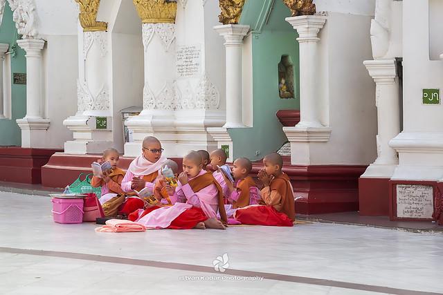 Studying Thilashin Girls, Shwedagon Pagoda, Yangon, Myanmar