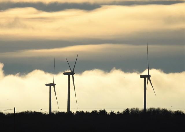 Trio of Wind Turbines Under Cream Clouds