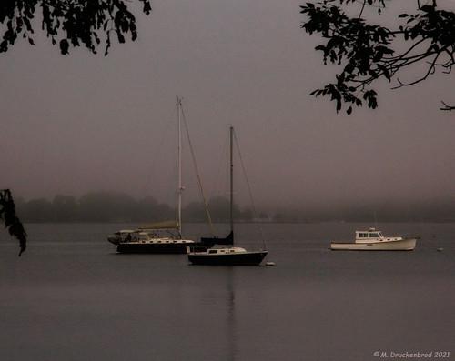 oxfordmaryland tredavonriver morningmist mist townofoxford oxfordmd maryland md sunset marylandeasternshore waterfronttown talbotcountymd sail sailboat