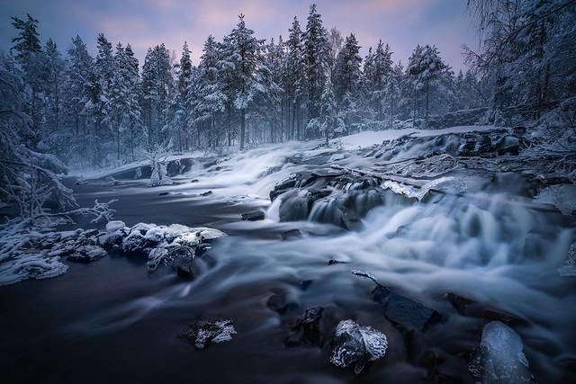 Cold Flow
