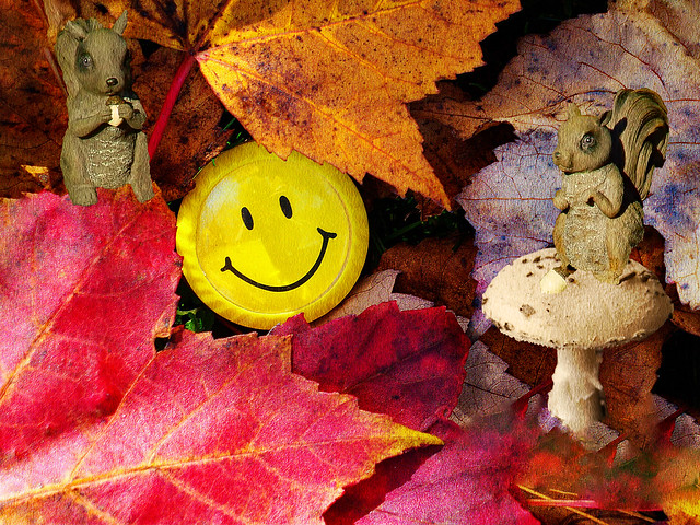 Smile...It's Fall All Over Again