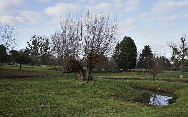 Landscape Heerlen Nieuw Ecykholt