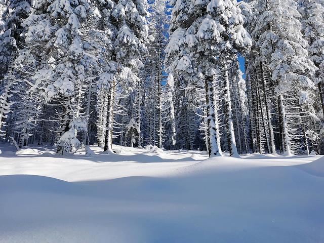 De la neige en abondance !