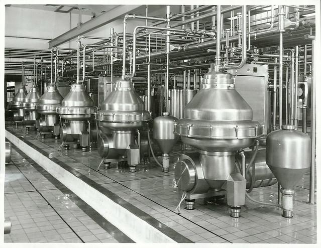 Kiwi Dairies Ltd. near Hawera. Milk separators in the milk reception hall