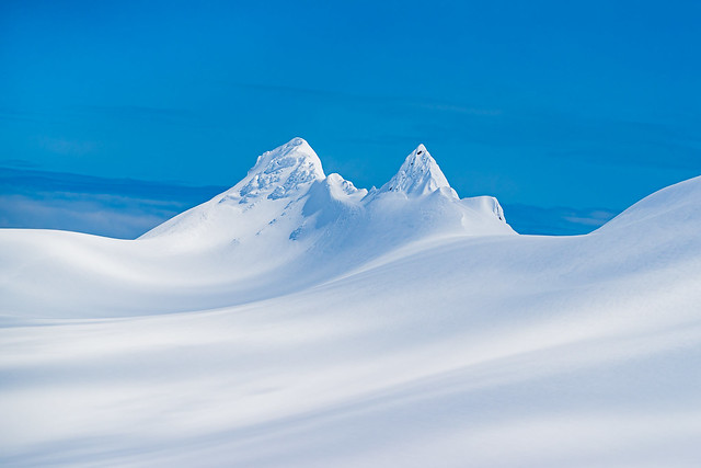 Snow Dreams - Kenai Fjords National Park